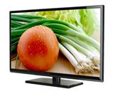 PROSCAN Flat Panel Television PLDED3273A-E